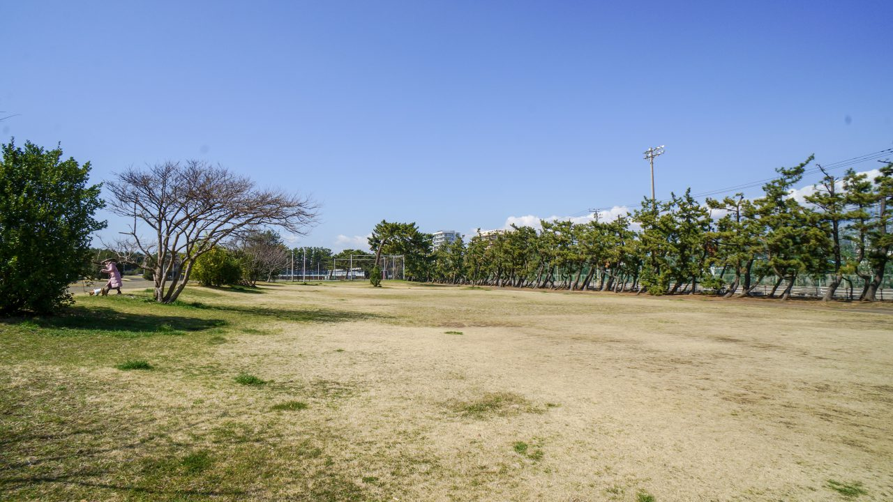 湘南海岸公園 広場1
