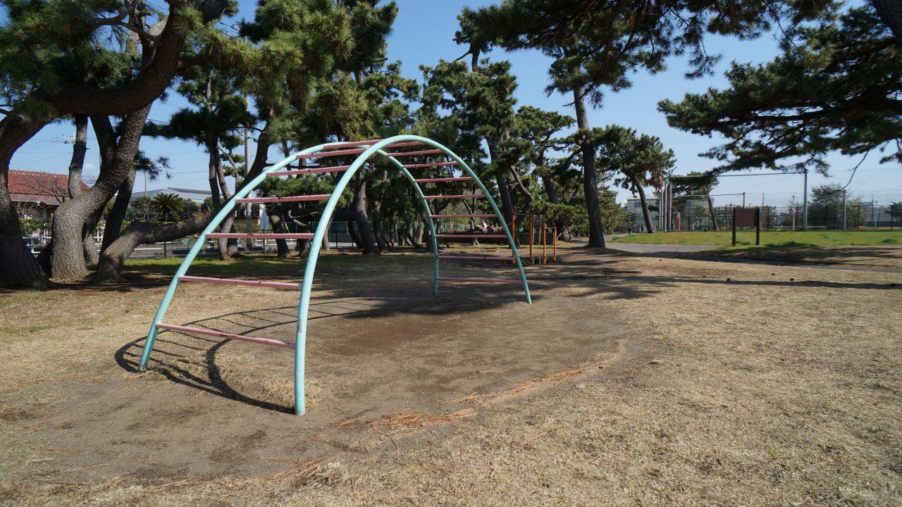 湘南海岸公園 うんてい