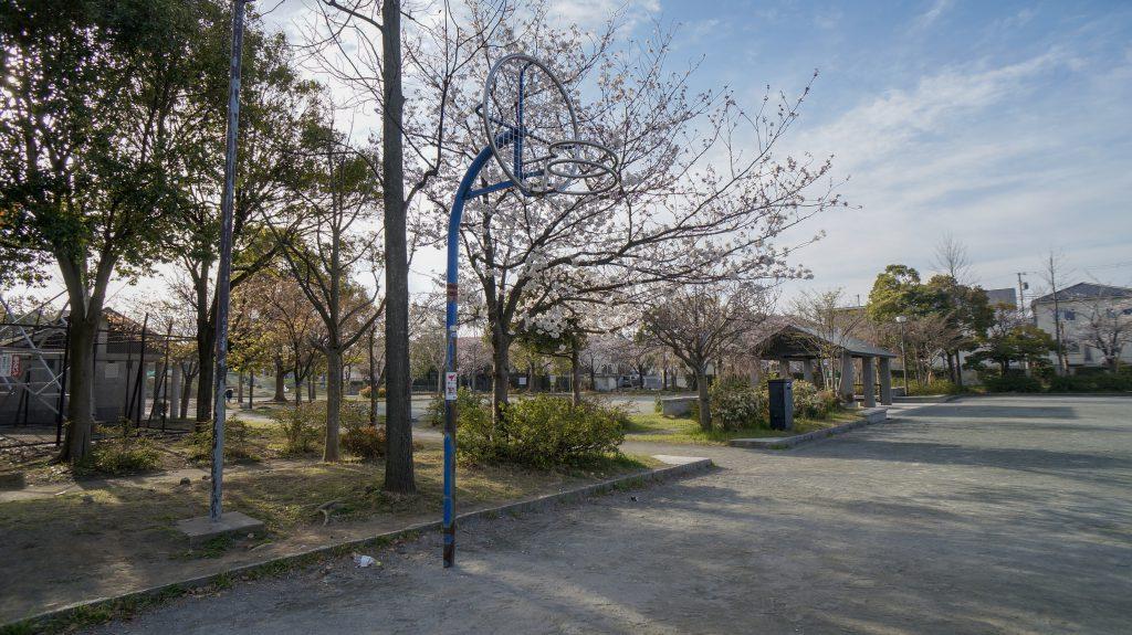 大塚山公園 バスケ