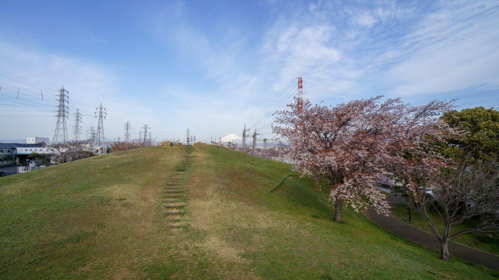大塚山公園 広場 3