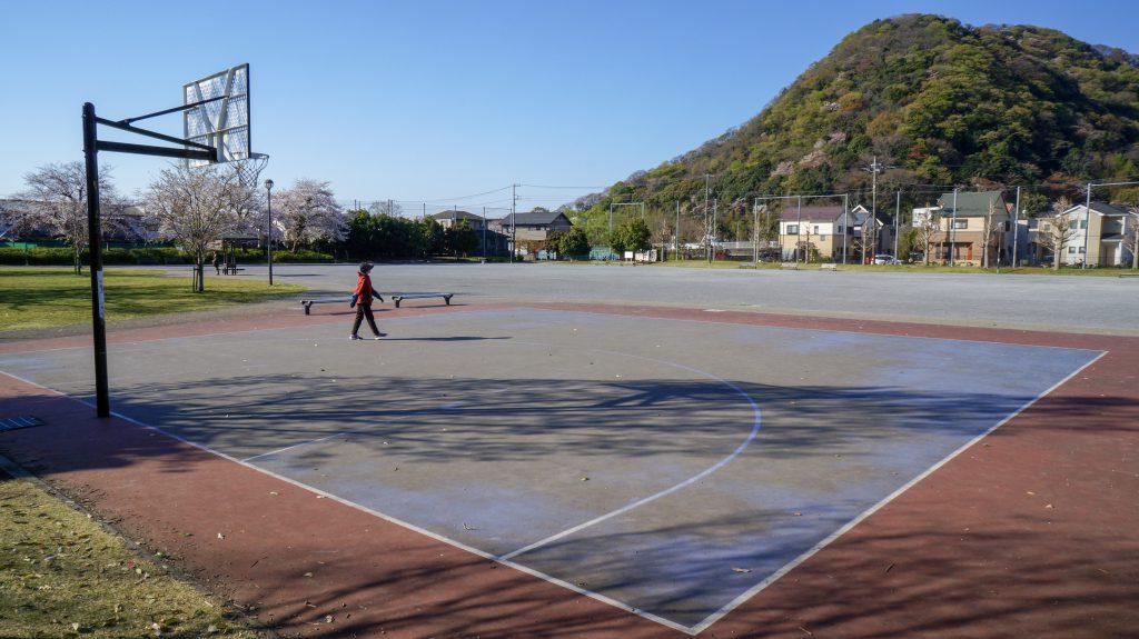 桜ヶ丘公園 バスケット
