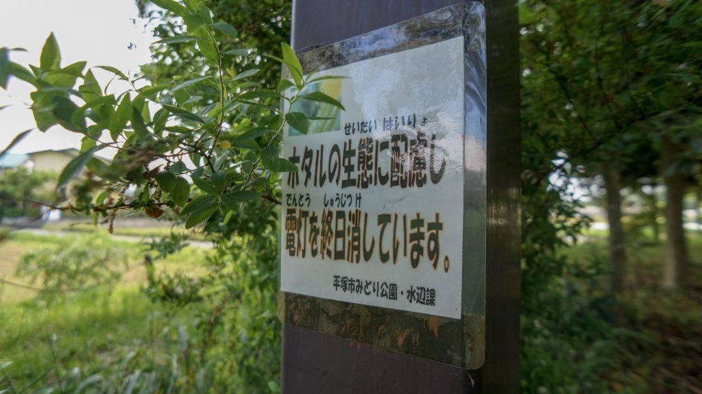 金目親水公園 ホタル2
