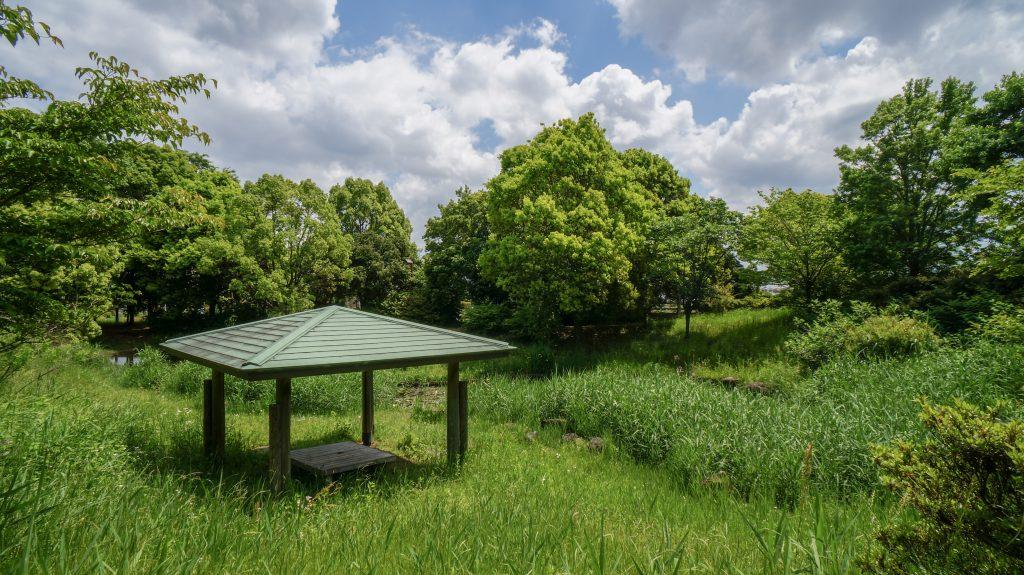 金目親水公園 池ベンチ