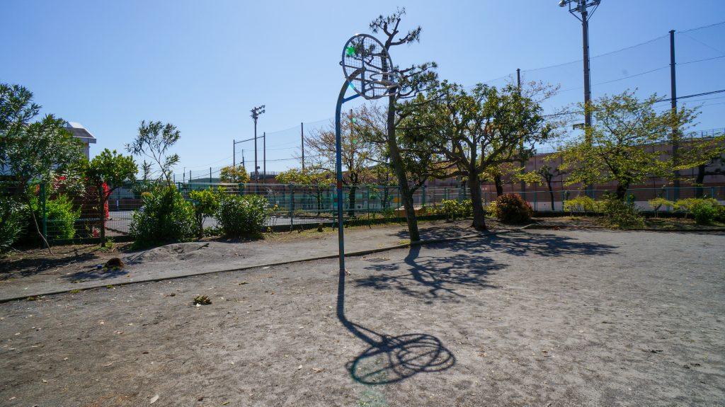 桃浜 バスケット